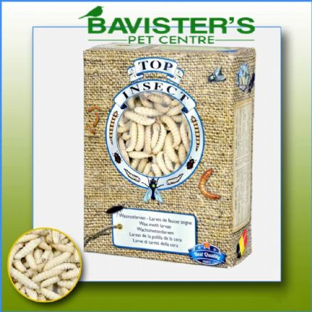 TOP INSECT FROZEN WAXWORMS 425gms